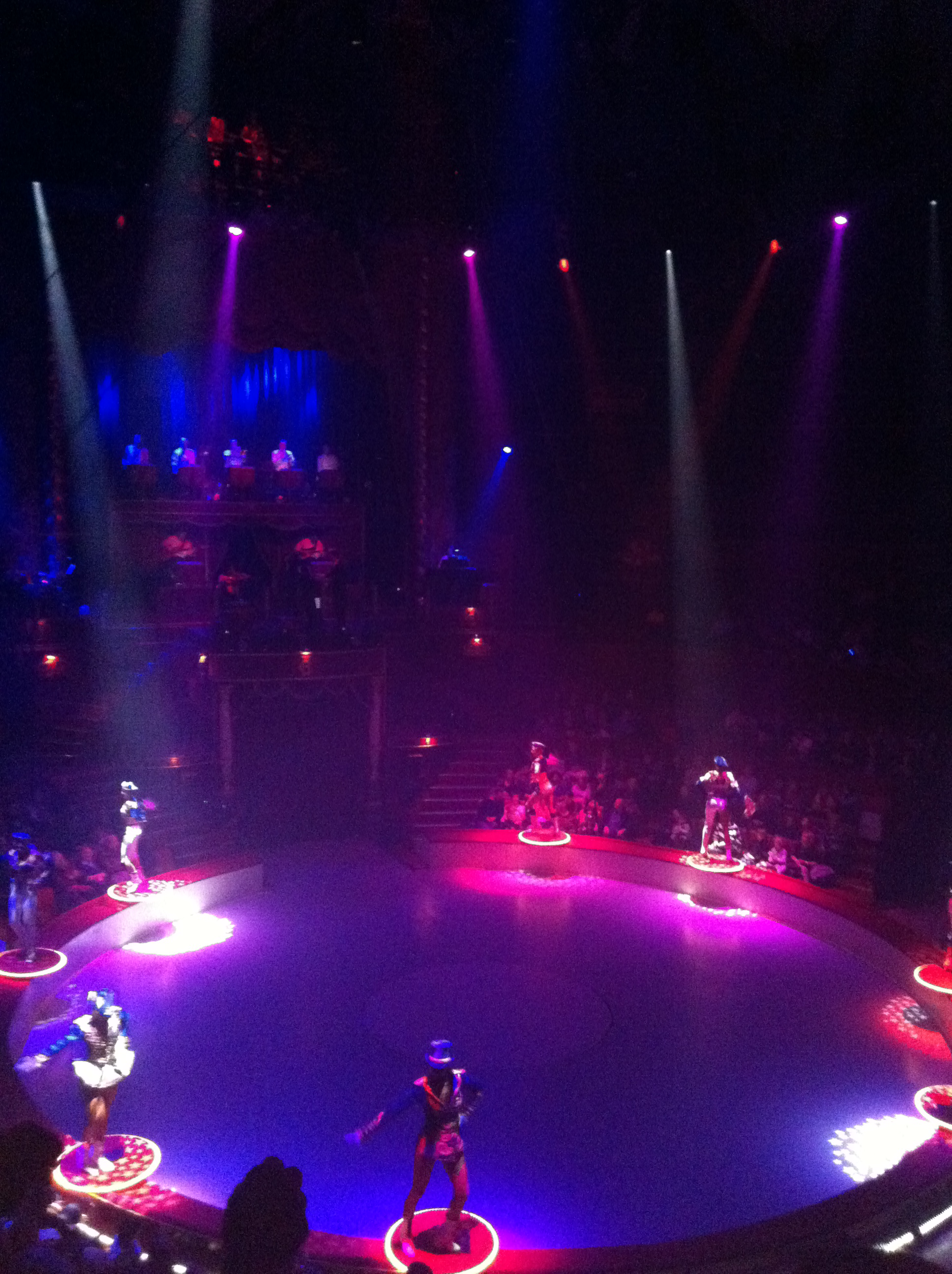 paris sightseeing : winter circus